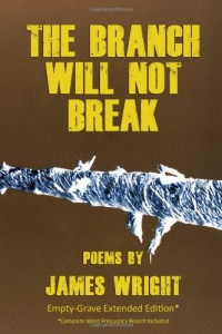 The Branch Will Not Break by Richard Wright