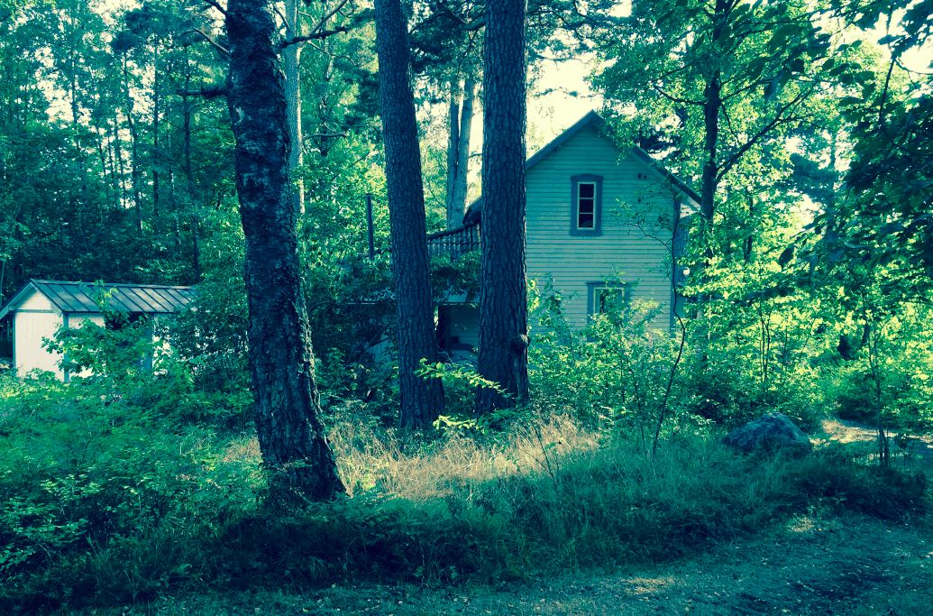 Tomas Transtromer's house