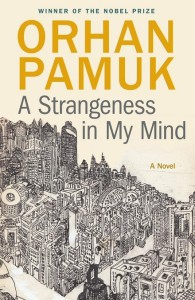 A Strangeness in My Mind, Pamuk