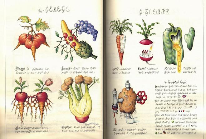 Codex-Seraphinianus111