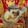 Queen Mob