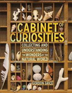 Cabient of Curiosities