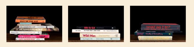 Nina Katchadourian, Sorted Books