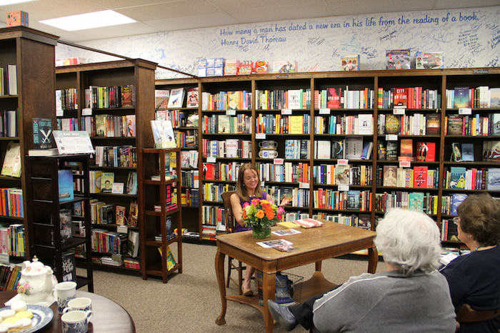 blue willow books