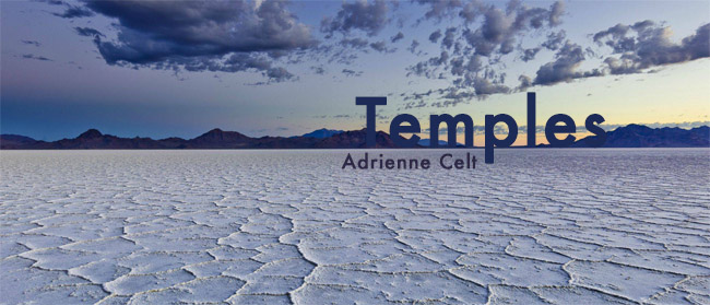 temples banner