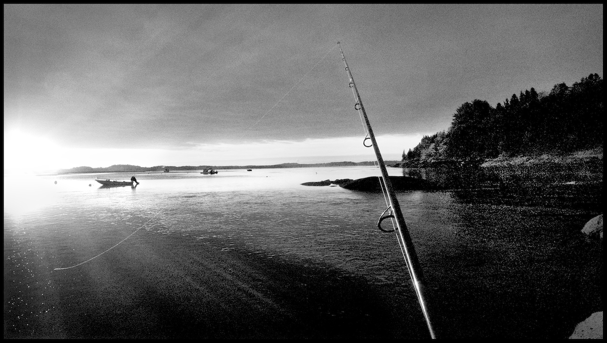 Essex River, Conomo Point, 2013