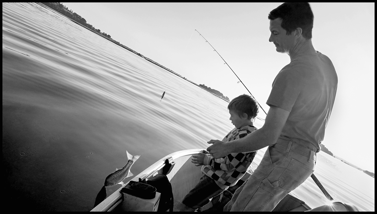 Fishing For Striped Bass, Essex River, 2013