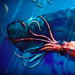 squid whale