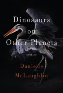 dinosaurs-on-other-planets-stories-by-danielle-mclaughlin-081299843X