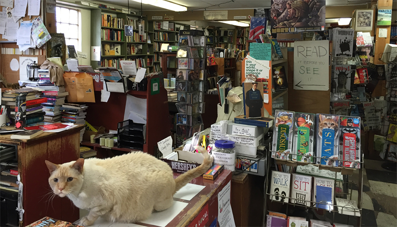 Interview with a Bookstore: Farley's Bookshop