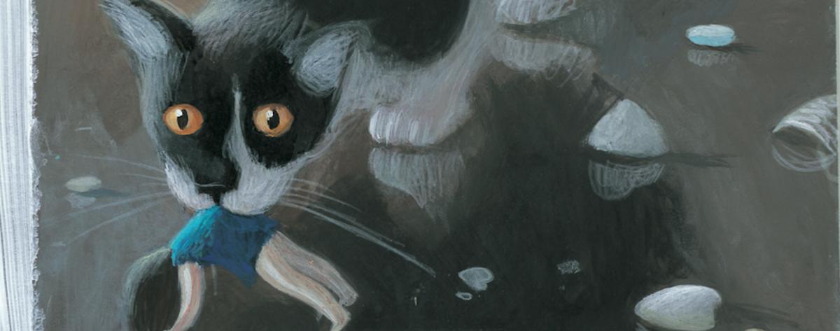 Best illustrated childrens books 2020
