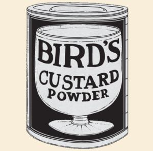 birds-custard
