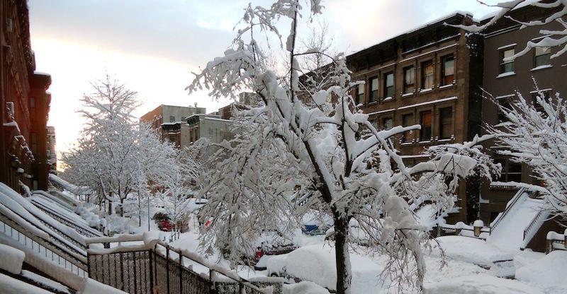 Harlem-Snow