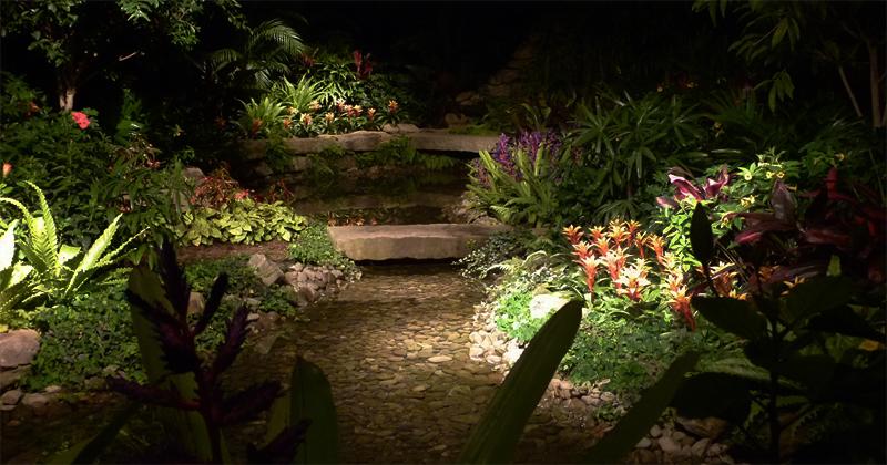 Night garden literary hub for A night at the garden