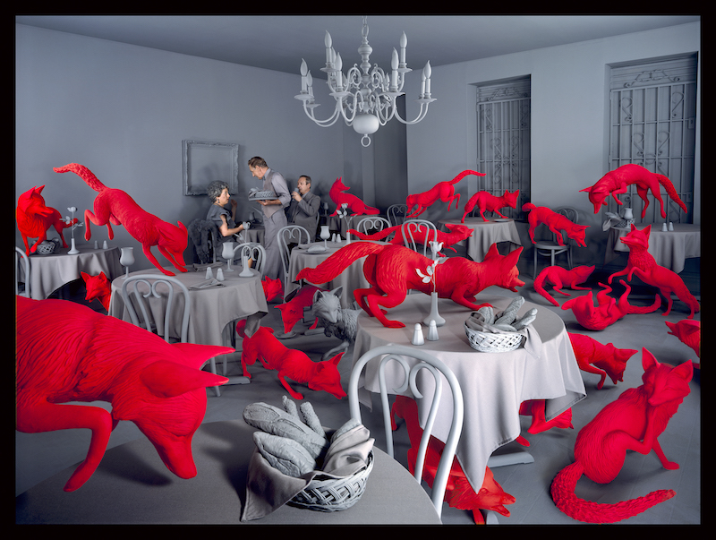 sandy skoglund fox games