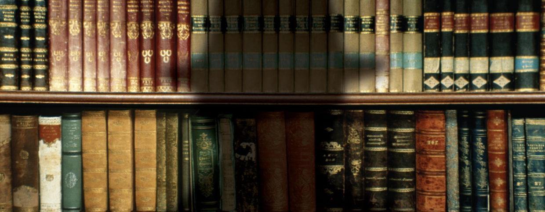 read Origins of Language: