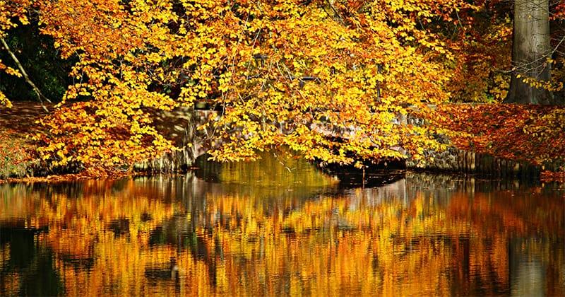 to autumn by william blake analysis