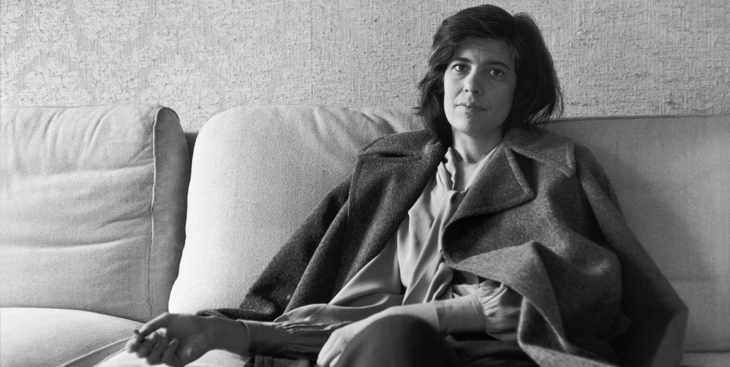 susan sontag regarding the pain of others