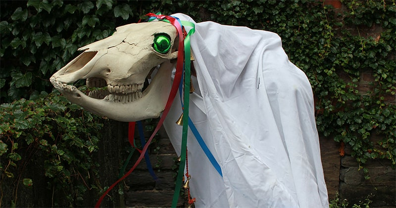 5 poems to appease the infamous welsh christmas horse skeleton