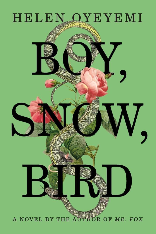 oyeyemi boy snow bird