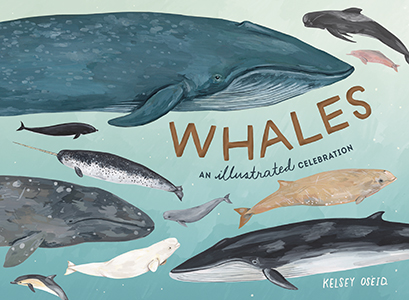 Kelsey Oseid,Whales: An Illustrated Celebration