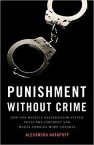 Alexandra Natapoff, Punishment Without Crime