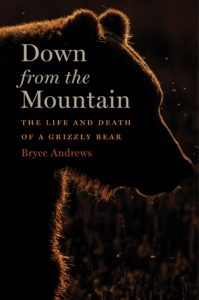 bryce andrews down from the mountain