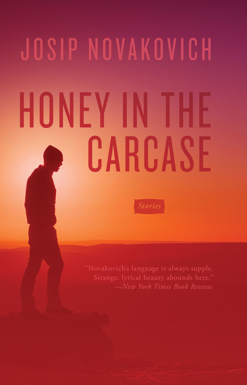 Honey in the Carcase | Literary Hub