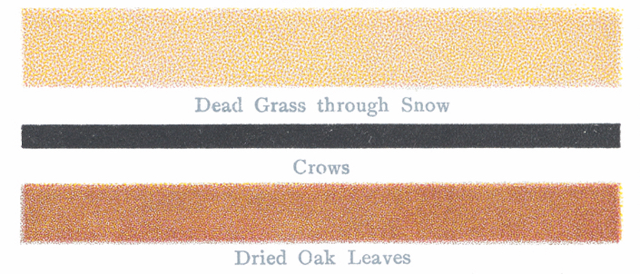 An Oddly Poetic Account of Colorblindness from the Turn of the Last Century