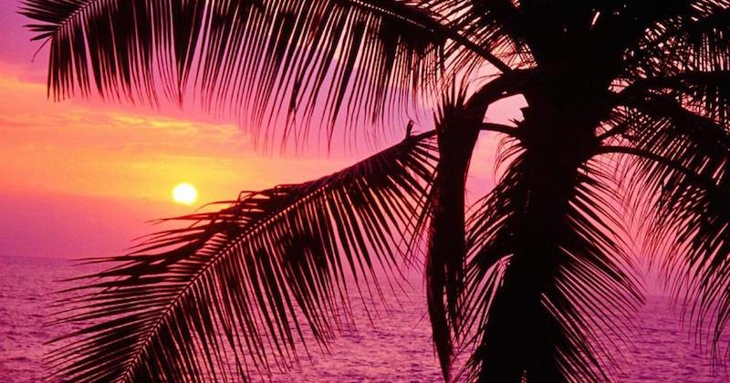 time tropics