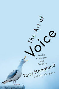 art of the voice cover