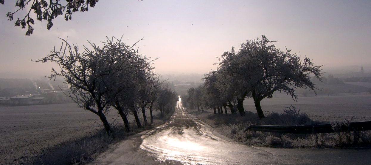 'Rain Travel' a Poem By W.S. Merwin