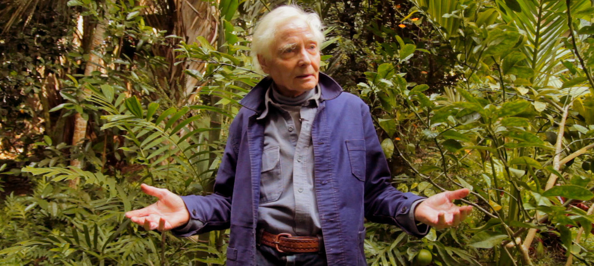On the Poetic Legacy of W S  Merwin | Literary Hub