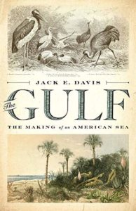 Jack E. Davis, The Gulf: The Making of An American Sea