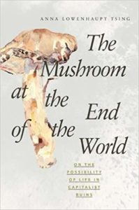 Anna Tsing, The Mushroom at the End of the World