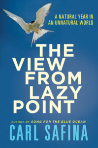 Carl Safina, The View From Lazy Point