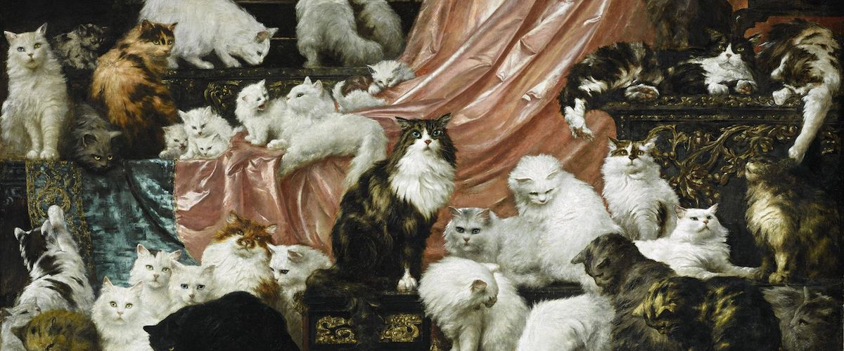 15 Great Cat Poems Not Written By Cats | Literary Hub