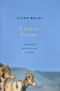 Ellen Meloy, Eating Stone: Imagination and the Loss of the Wild