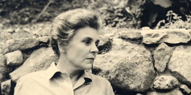 Why Do We Ignore the Suffering in the Poems of Mary Oliver and Elizabeth Bishop?