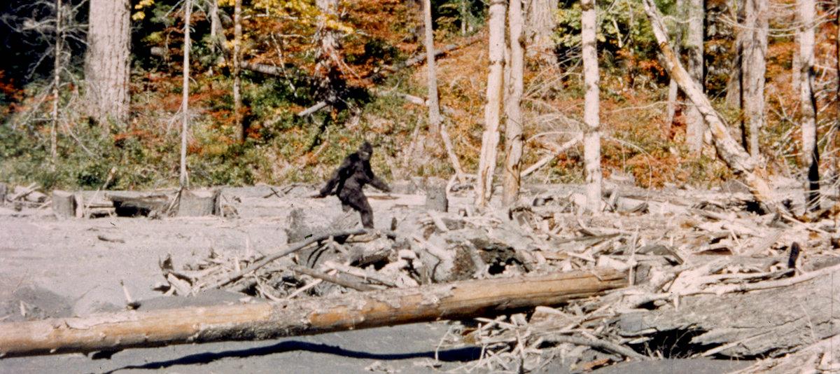 On Peter Matthiessen's Lifelong Fascination with Bigfoot | Literary Hub