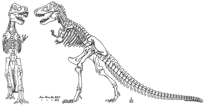 Finally  Literary Disco Talks Jurassic Park