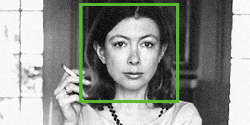 Here's what that AI face-categorizer did with 12 famous author photos.
