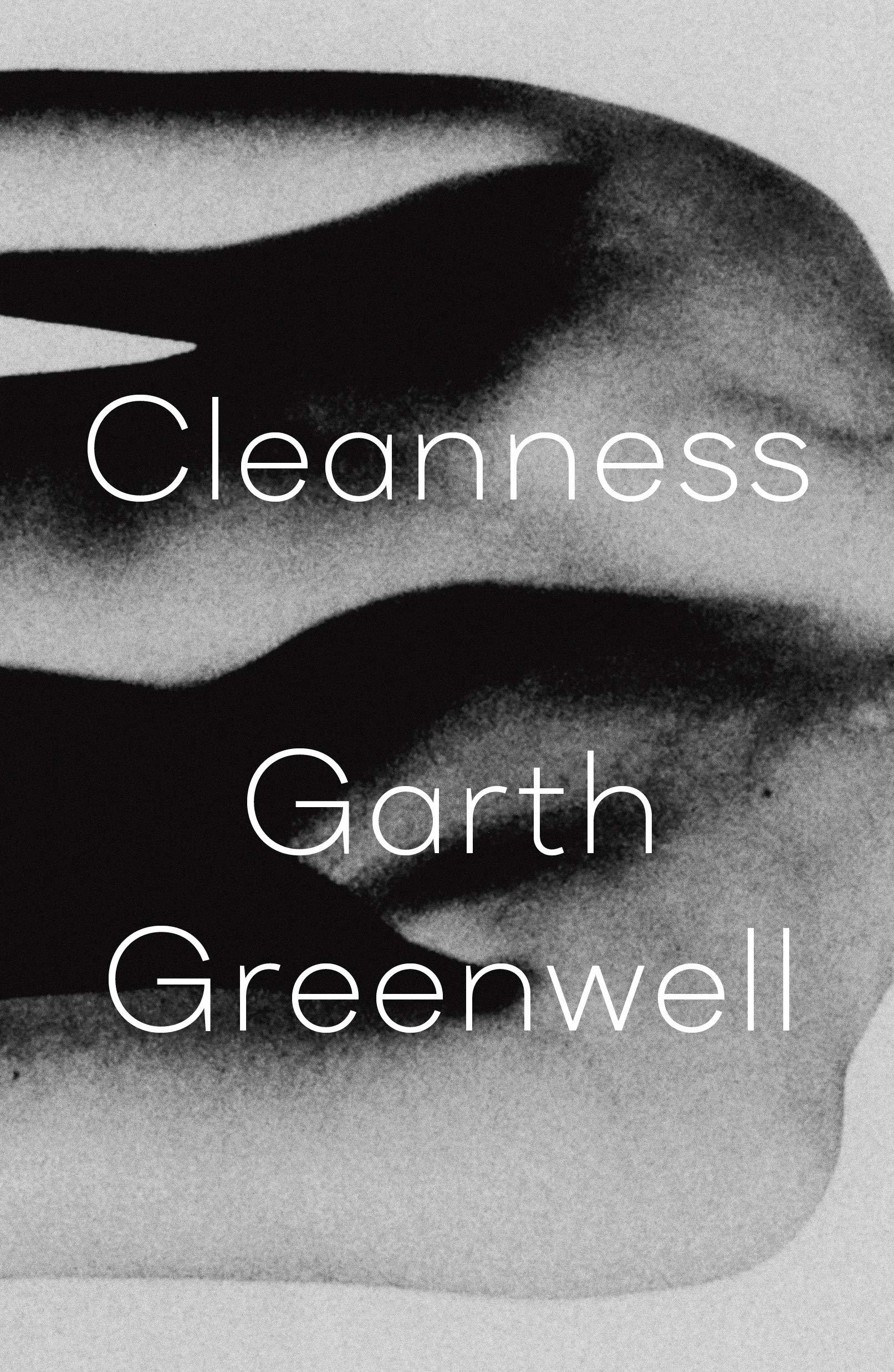 Garth Greenwell,Cleanness