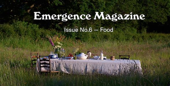 emergence magazine food