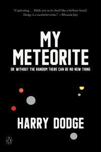 Harry Dodge's MY METEORITE