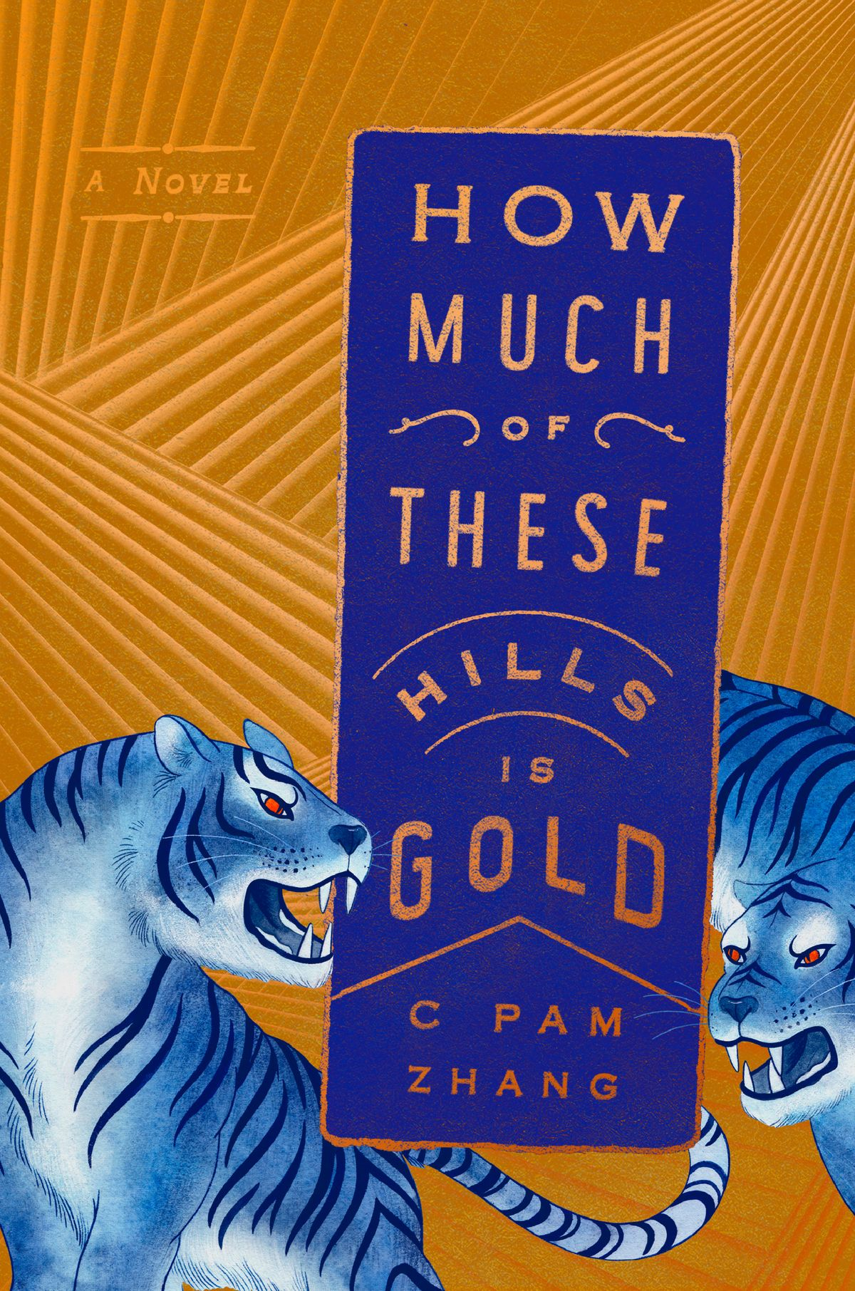 C Pam Zhang,How Much of These Hills Is Gold