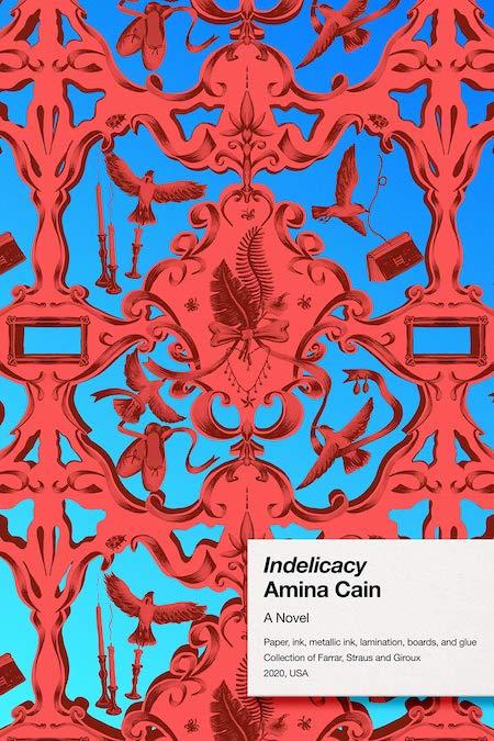 Amina Cain, <em>Indelicacy</em>; design by June Park (FSG, February 11)
