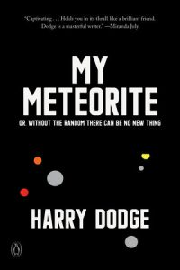 my meteorite