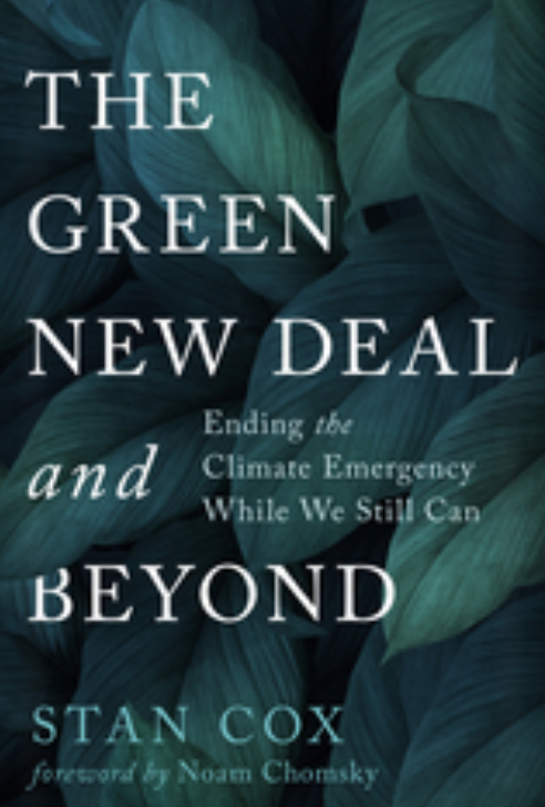 Noam Chomsky: A Green New Deal Can Create Jobs and Livelihoods 2