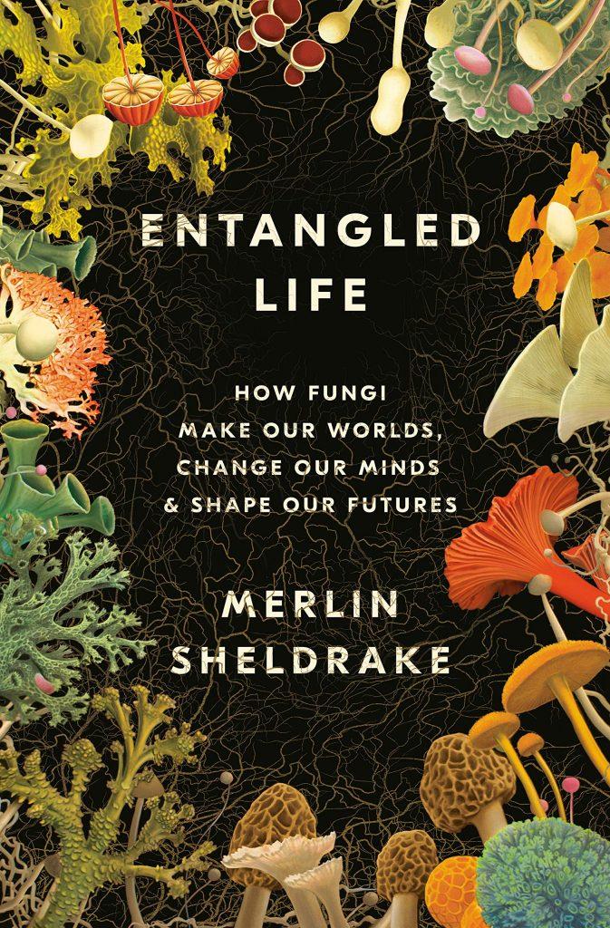 """Merlin Sheldrake, <em><a href=""""https://bookshop.org/a/132/9780525510314"""" target=""""_blank"""" rel=""""noopener"""">Entangled Life</a></em>; cover design by Lucas Heinrich, cover illustration by Tim O'Brien (Random House, May 12)"""